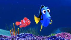 2015 Finding Dory Movie 4k