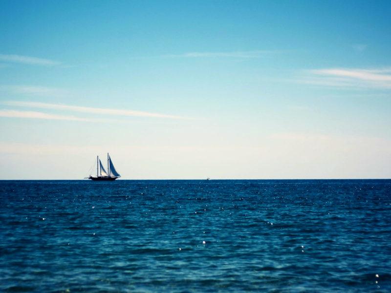 Boats 41