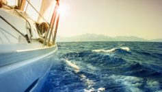 Boats 54