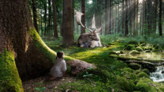 Fairytale Forest Wide