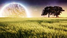Planet Farm Trees Landscape Wide