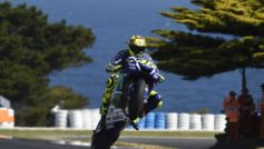 The Doctorphd In Wheelies.