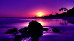 Amazing Purple Sunset Beach