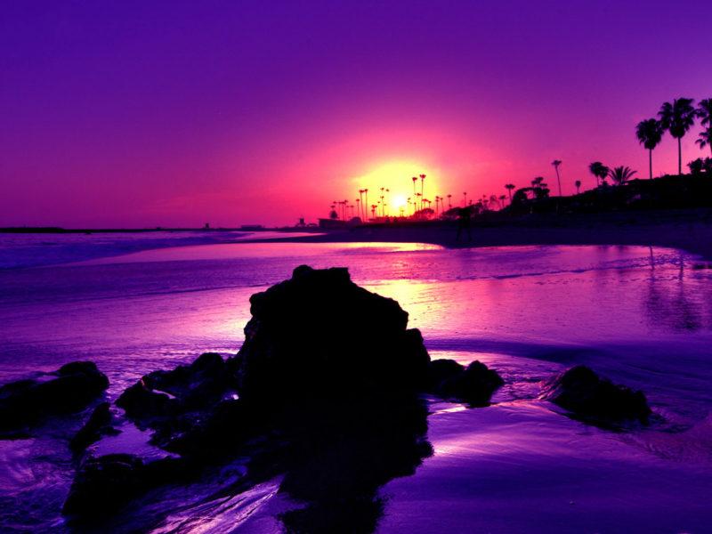 bbc08d6da Amazing Purple Sunset Beach - High Definition Wallpaper