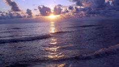 Sunset49